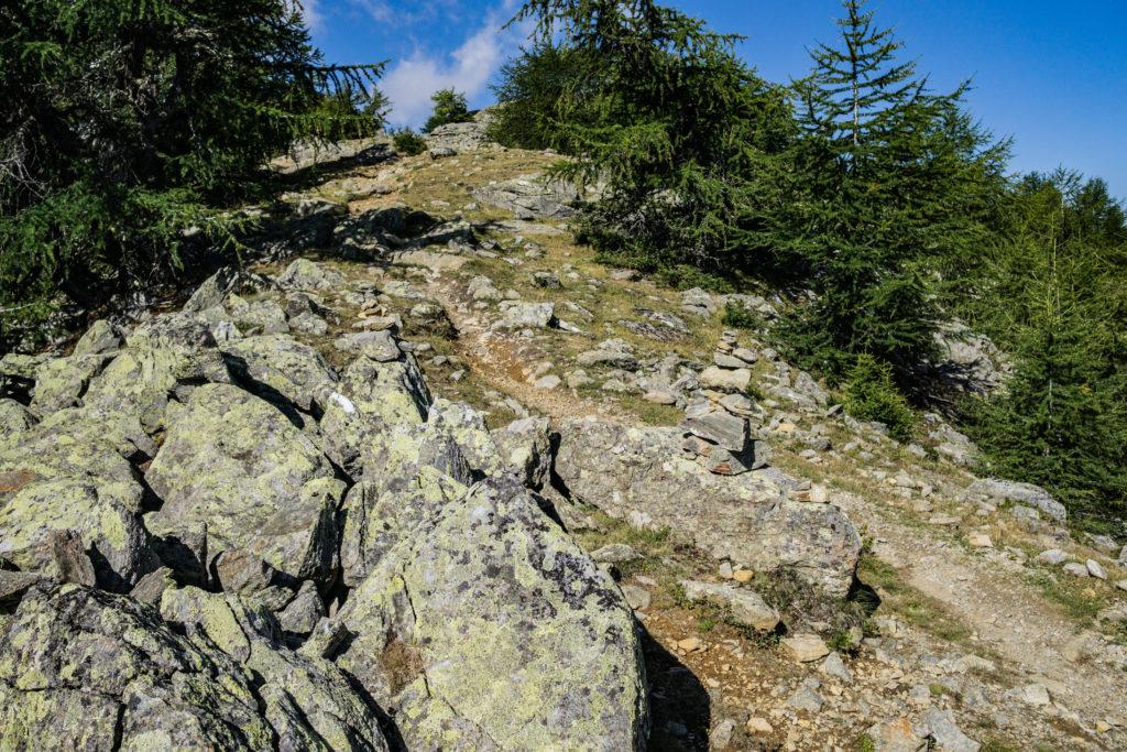 Das Bild zeigt einen Wanderweg, der von großen Steinen gekennzeichnet ist.