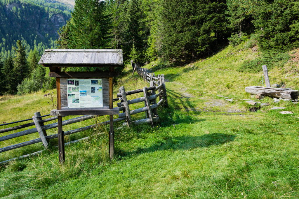 Der Weg zeigt eine Infotafel am Wegesrand.