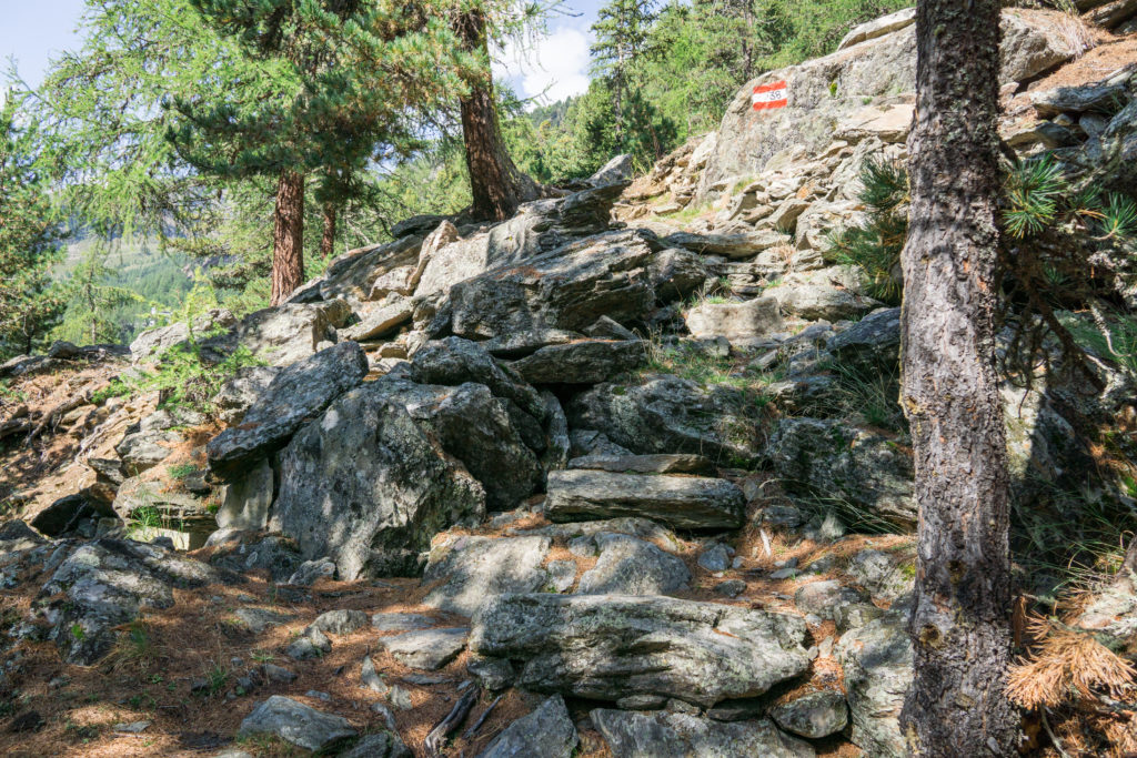 Das Bild zeigt den Wanderweg 38 im Martelltal.