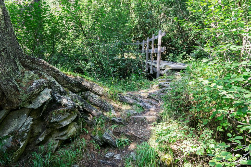 Eine Holzbrücke führt über einen Bachlauf.