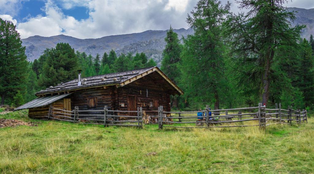 Das Bild zeigt die Obermarzoner Alm im Vinschgau.